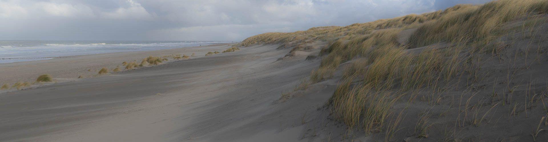 Westkapelle duinen